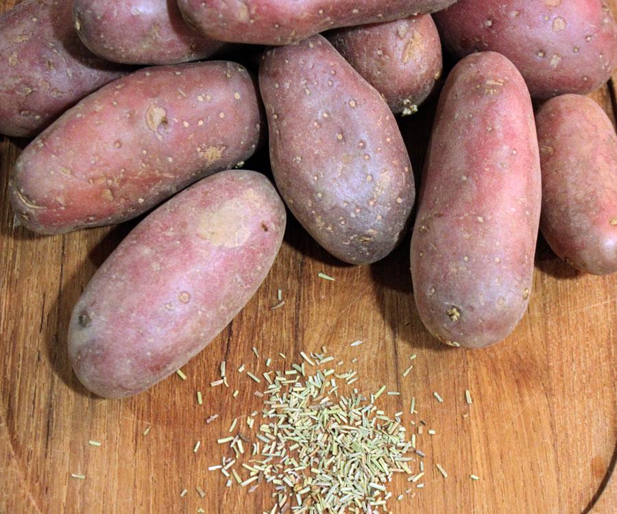 røde kartofler kogetid